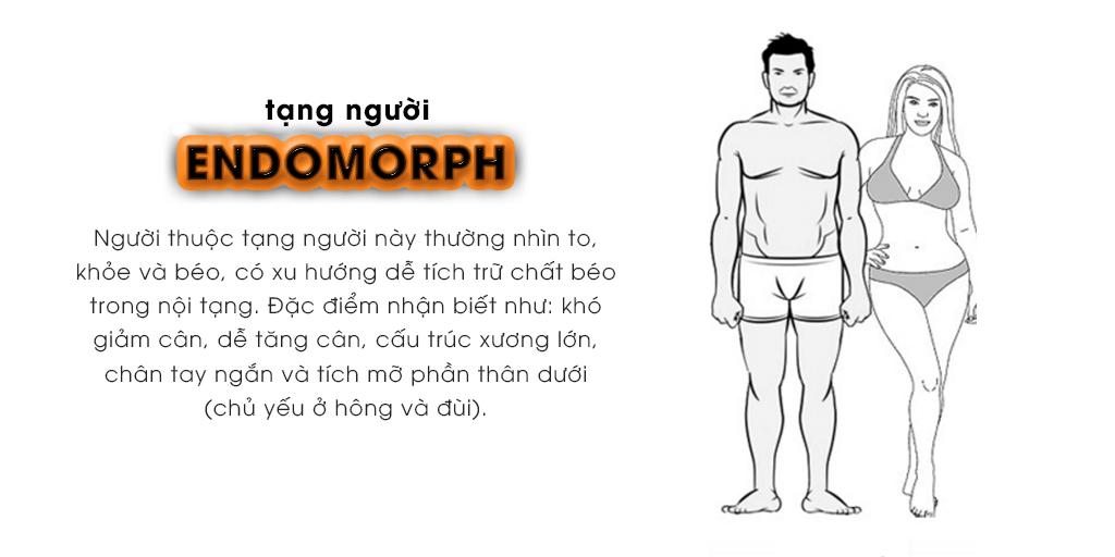 Tạng người Endomorph (tạng người béo)