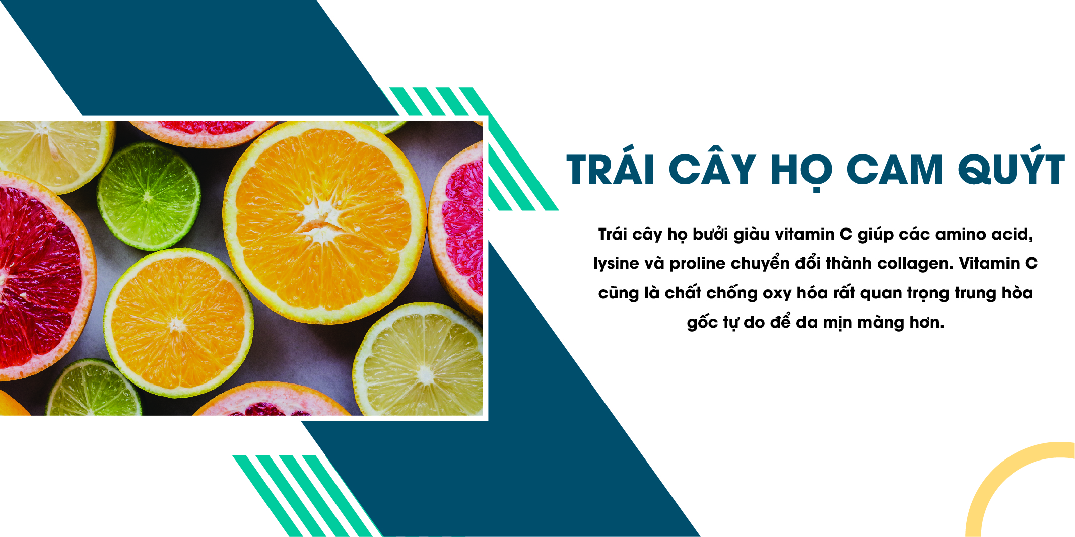 Trái cây họ cam quýt chứa chất chuyển đổi thành collagen
